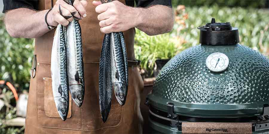 Smoked_mackerel_BigGreenEgg_2018M04-3-900x450